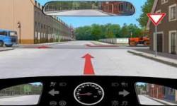 psihologic permis conducere
